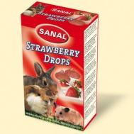 Sanal вит.д/грызунов Strawberry Drops 45г